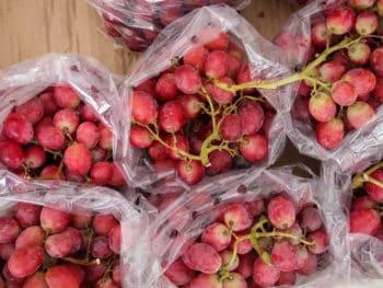 Store Grape